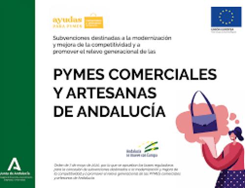 PUBLICACIÓN EN BOJA CONVOCATORIAS DE AYUDAS PYMES 2020